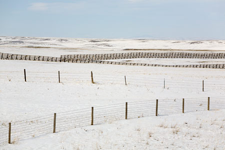 Wind Barrier and Fences, SD. ©David Gardner