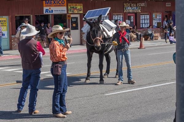 Solar mule.