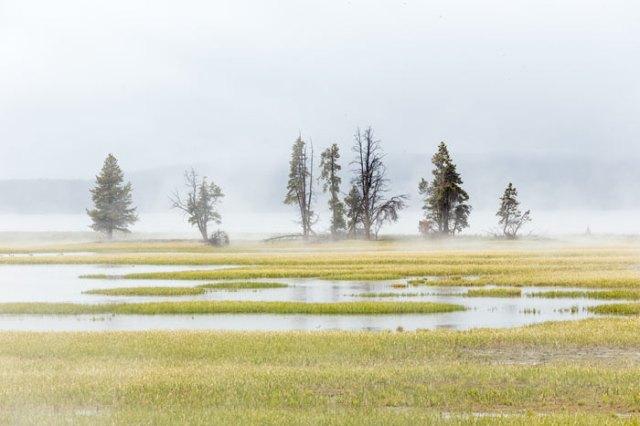 48403-Yellowstone1